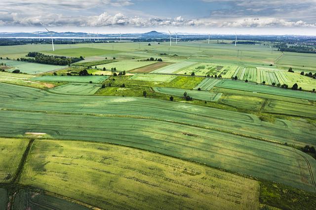 田舎が田舎に望むのはスタバ、都会が田舎に臨むのは独自性