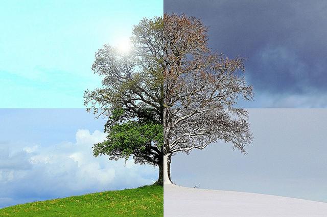 季節によってこんなに違いがあるんだと認識した話