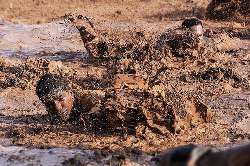 ひるまず泥臭くやれる人が生き残る、逆もまた然り。